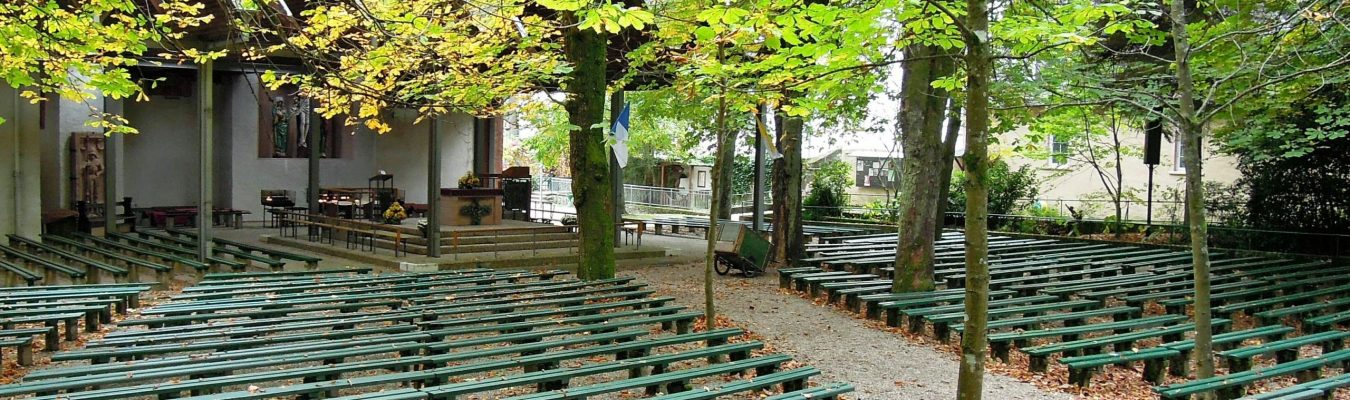 Talking more widely - outdoor auditorium under the trees